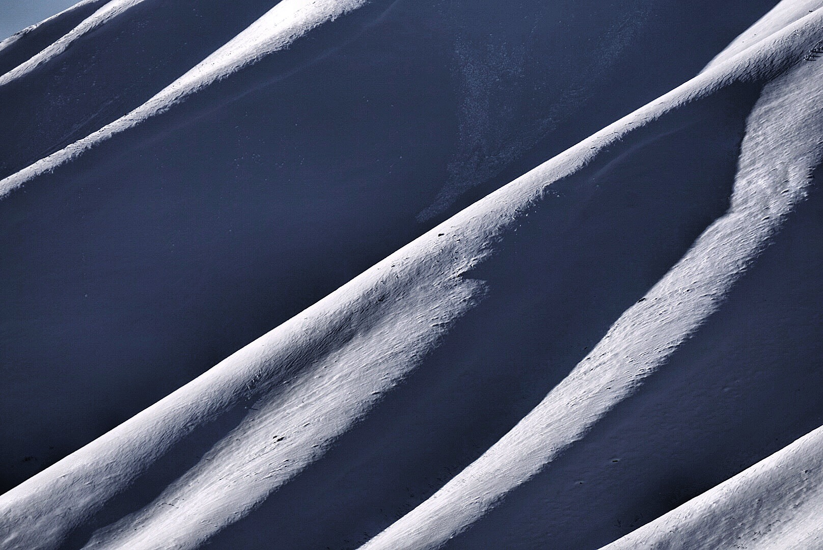 Sun valley spines